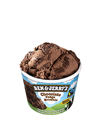 ben & jerrys vegan chocolate 100ml