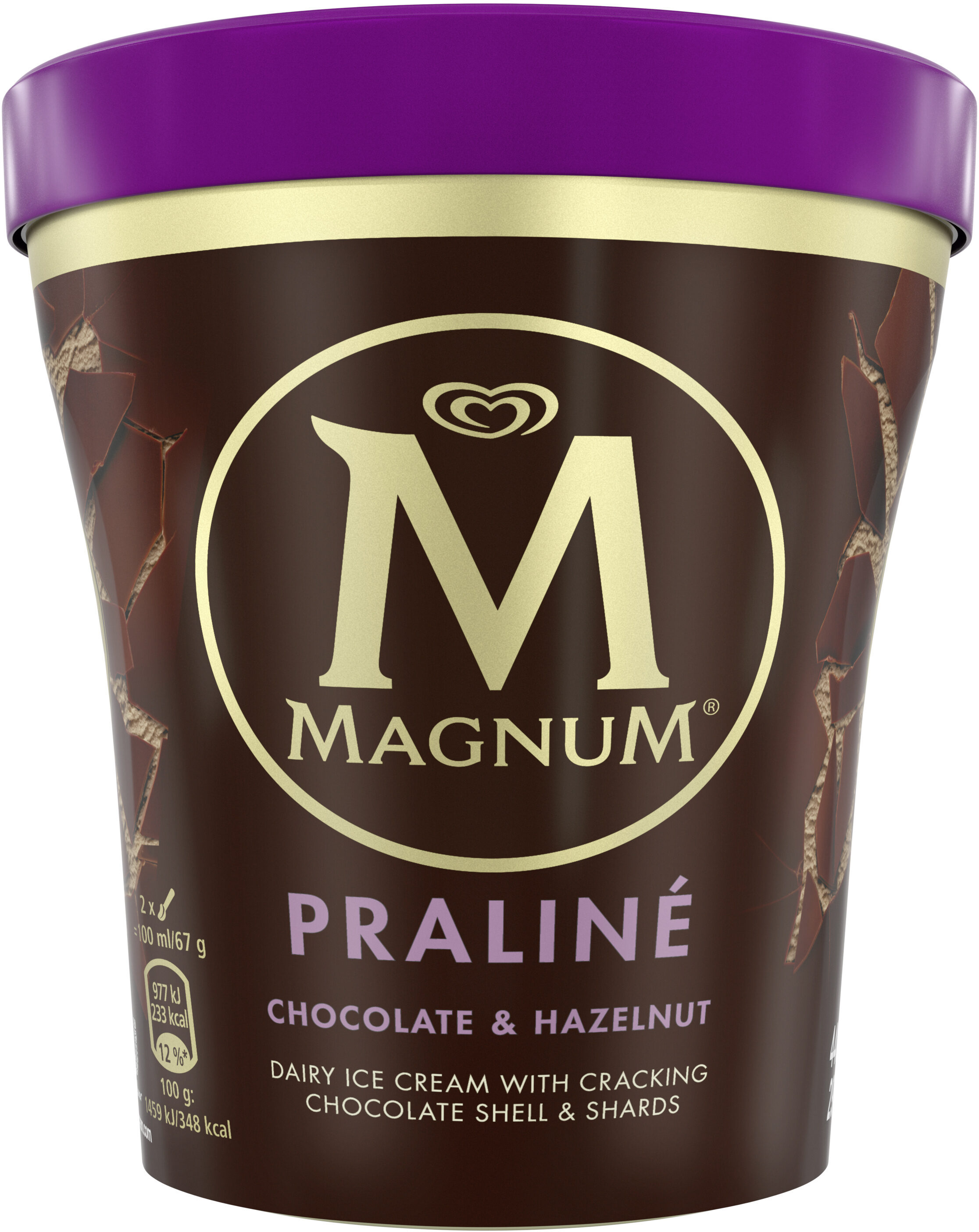 magnum pot noisette praline 440ml